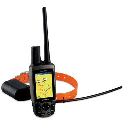 Garmin Astro Gps Dog Tracker Collar Pinpoints Your Dog S Position