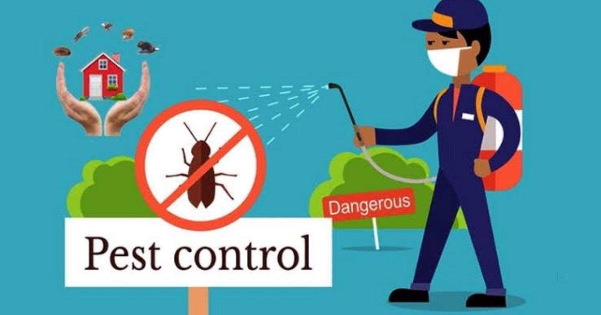 Bug Control: How To Choose A Pest Control Company