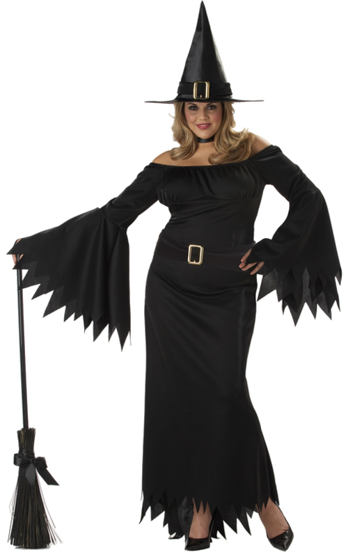 Elegant Witch Costume (Plus Size Costumes for women