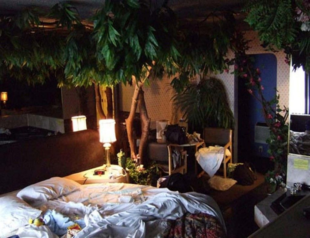 Indoor plant decorating ideas indoor plant ideas house Plant room design