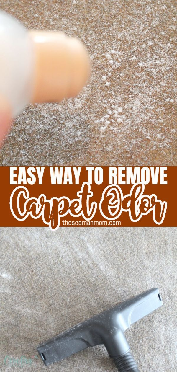 how to remove pet smells from carpet