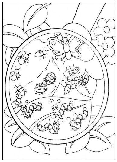 Insecten door een vergrootglas   thema: herfst   Pinterest ...