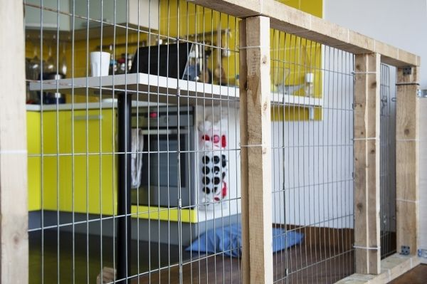 Indoor Dog Fence Ideas Fence Ideas With Images Indoor Dog