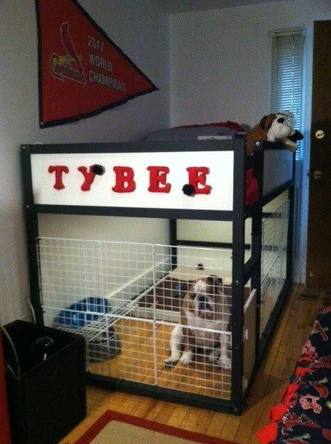 The Dog Suite is part of Dog cages, Diy dog stuff, Pet furniture, Dog houses, Dog rooms, Dog crate - water, etc  The Kura bed …