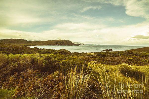 Harmonious pastel tone background of seaside terrain leading to the foreshore of Lighthouse Bay Beach, Bruny Island, Tasmania by Ryan Jorgensen