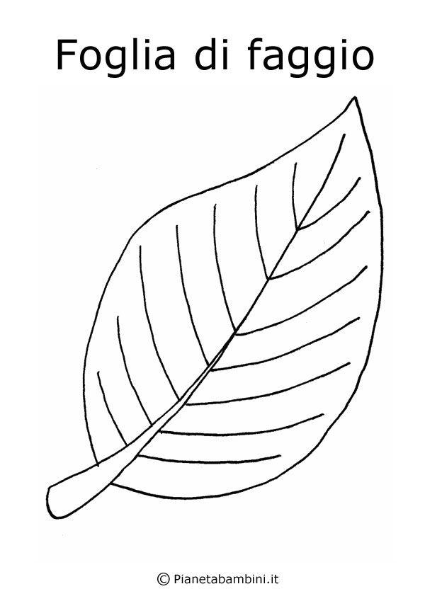 Disegni di frutta e foglie autunnali da colorare for Fiori grandi da colorare