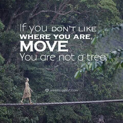If You Dont Like Where You Are Move You Are Not A Tree Words And
