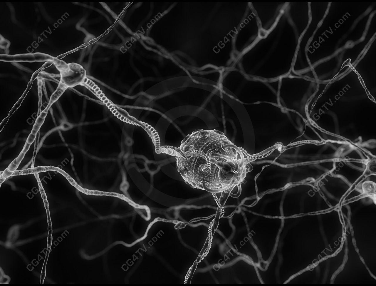 cells under microscope - Google Search | micro | Pinterest