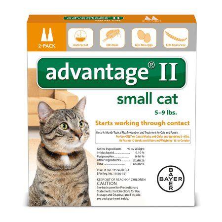 Pets Flea control for cats, Flea treatment for kittens
