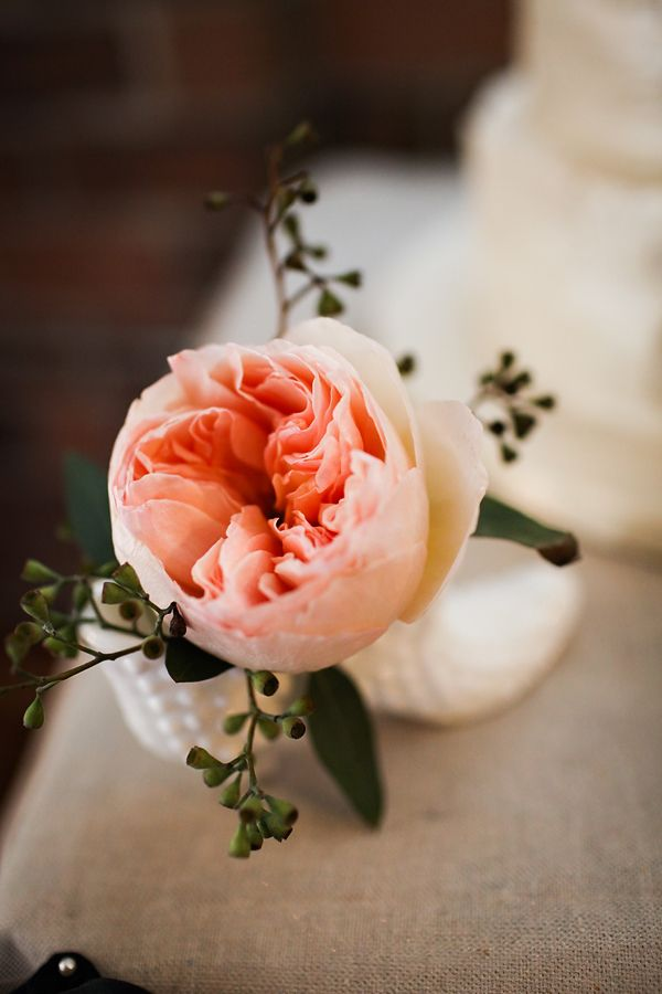 Love the flower and love peach