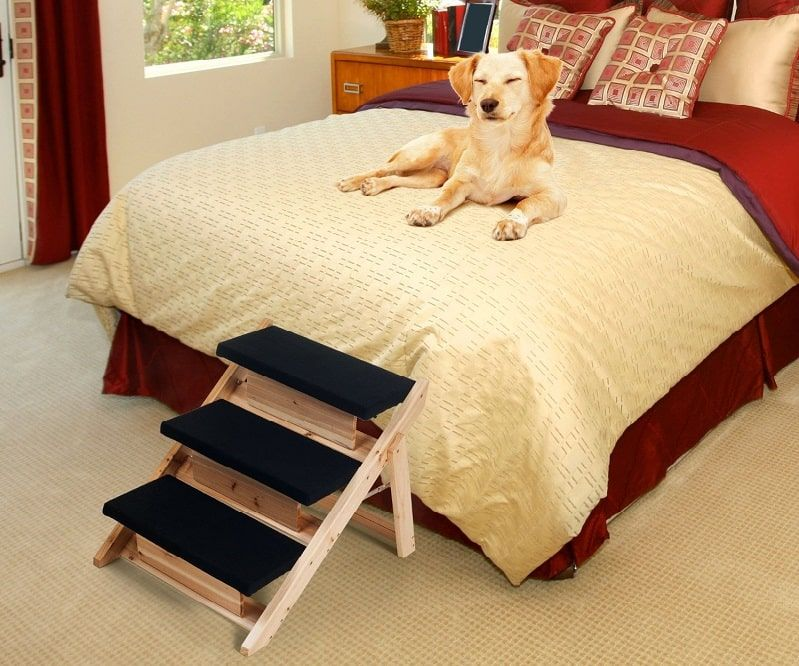 How to Build Dog Stairs A Fun And Useful DIY Project