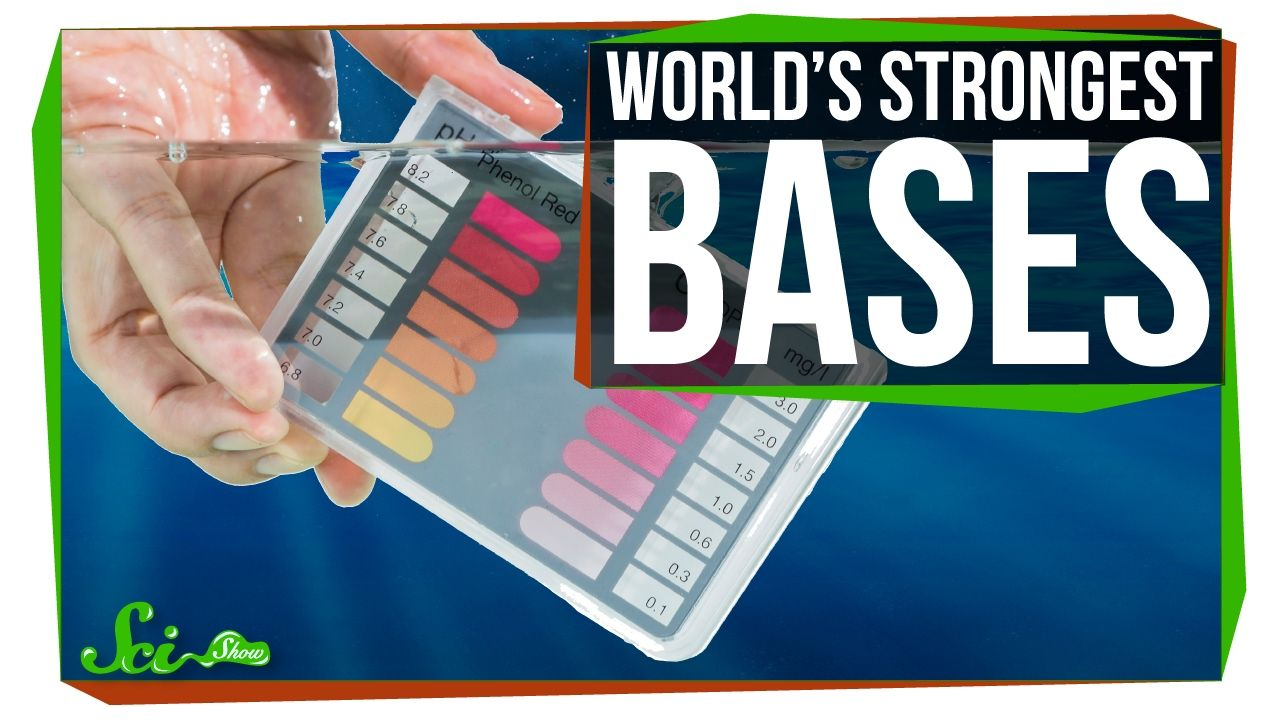 The Strongest Bases in the World YouTube Teaching