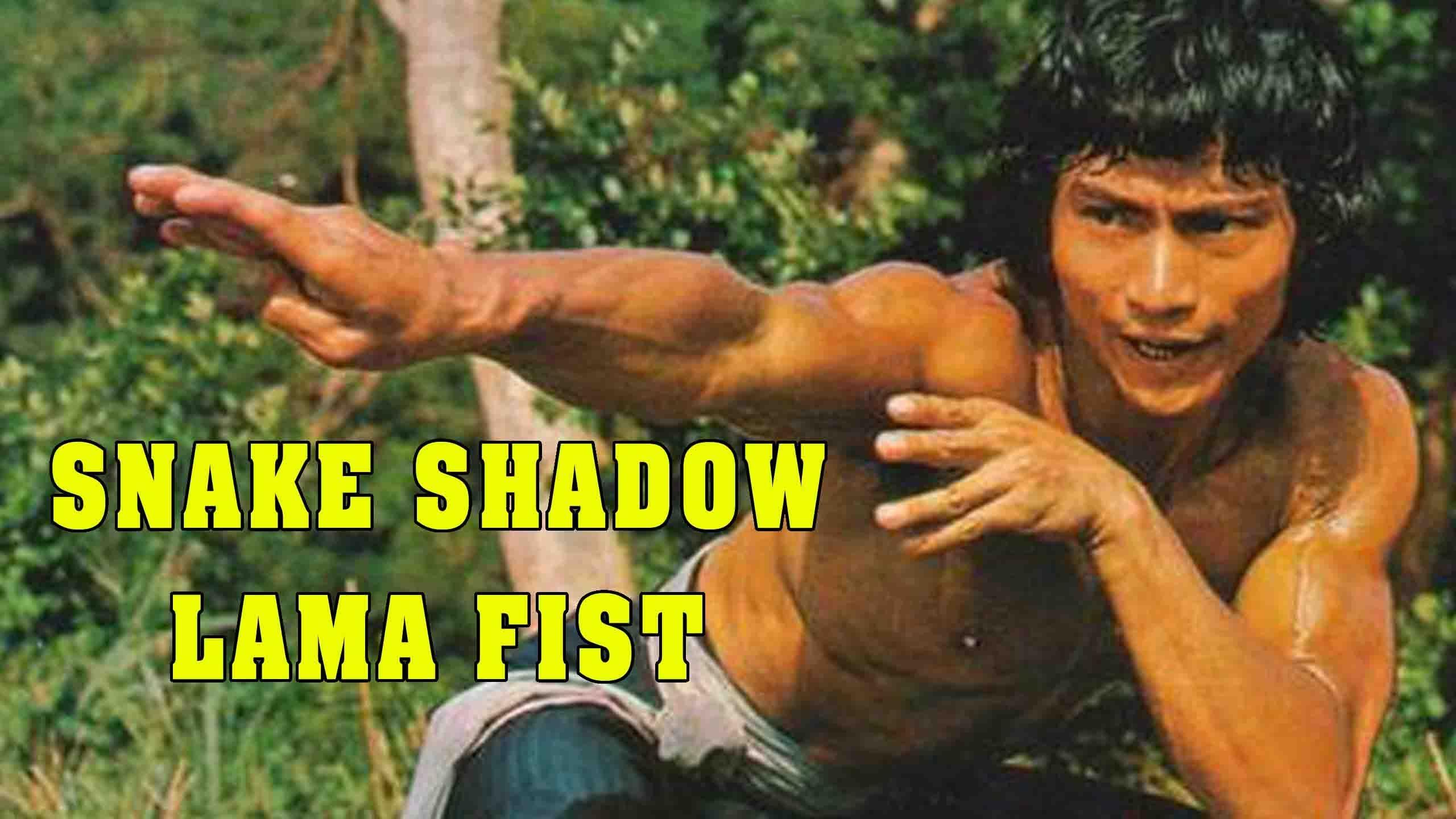 Wu Tang Collection Snake Shadow Lama Fist Wu tang