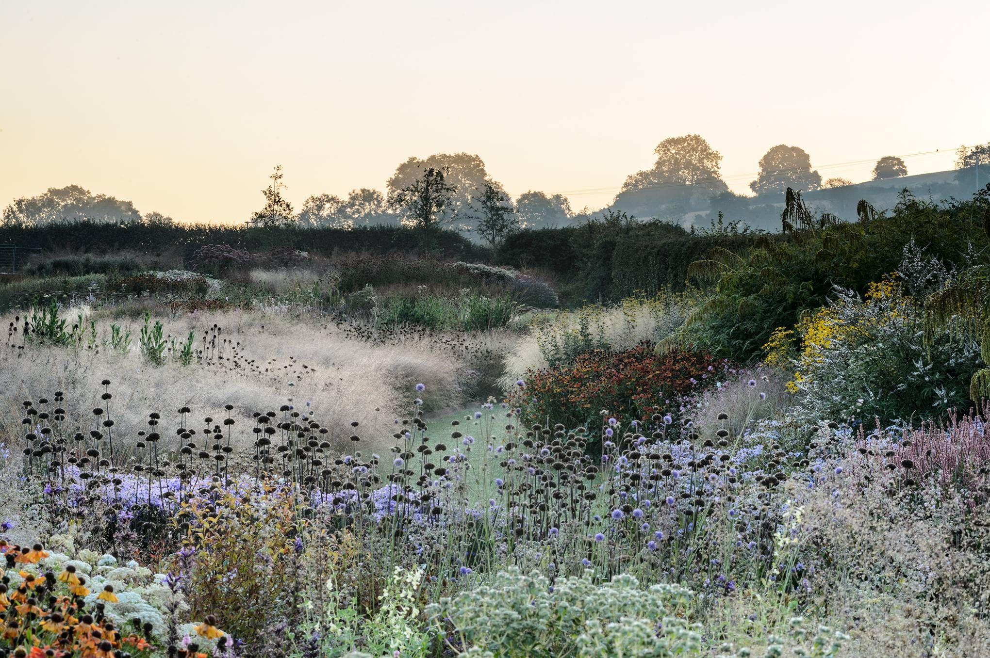 Piet Oudolf S Garden At Hauser Wirth Somerset In 2020 Dutch Gardens Landscape Design Landscape