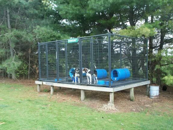 ukc forums above ground kennel plans or ideas - Dog Kennel Design Ideas