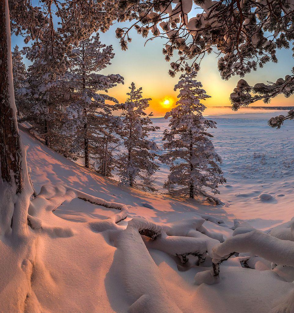 Федор Лашков / Ленинградская область, Приозерский район, берег Ладожского озера. Начало января, 2016.