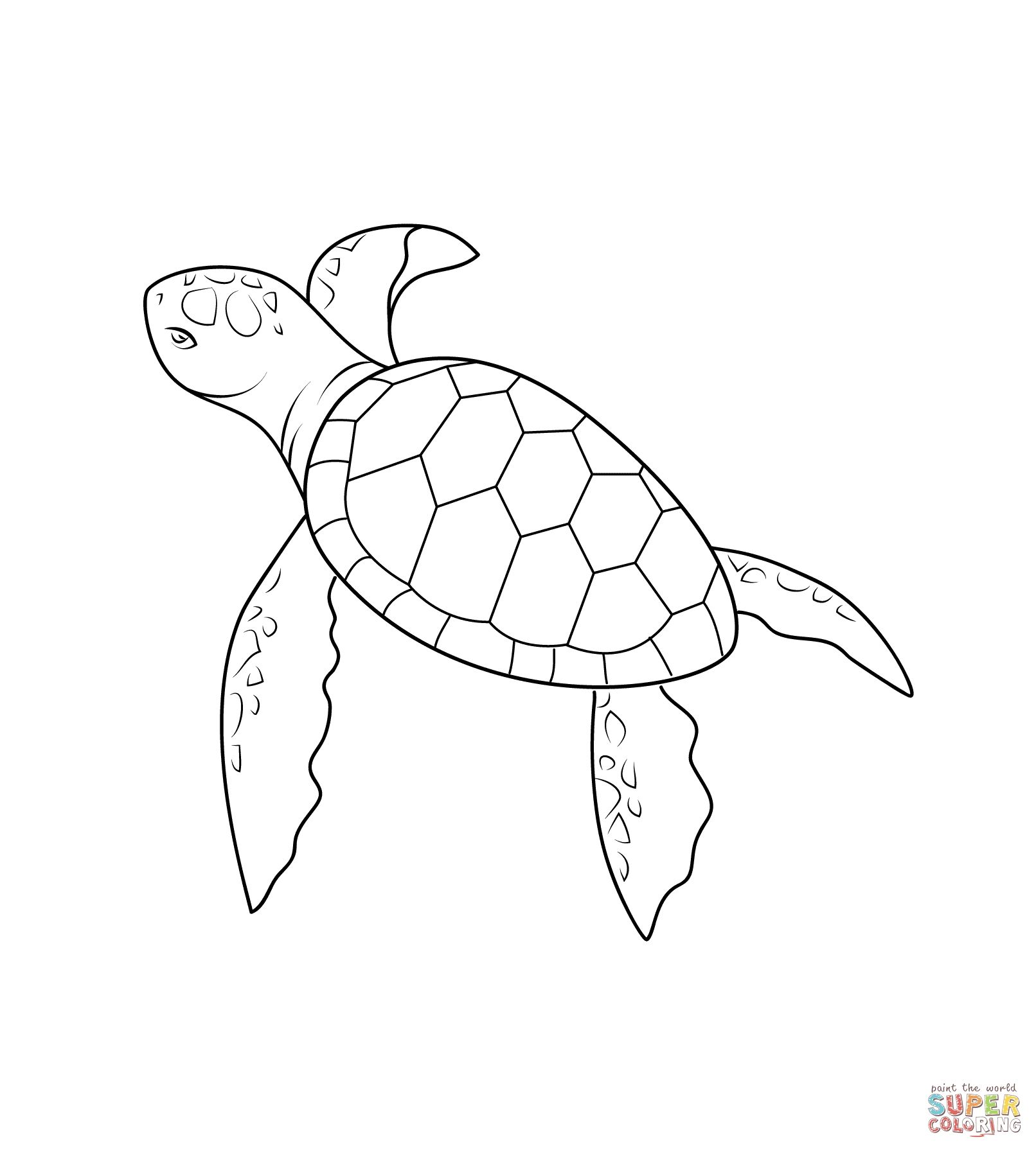 Malvorlagen Schildkröte Schule   Turtle drawing, Turtle ...