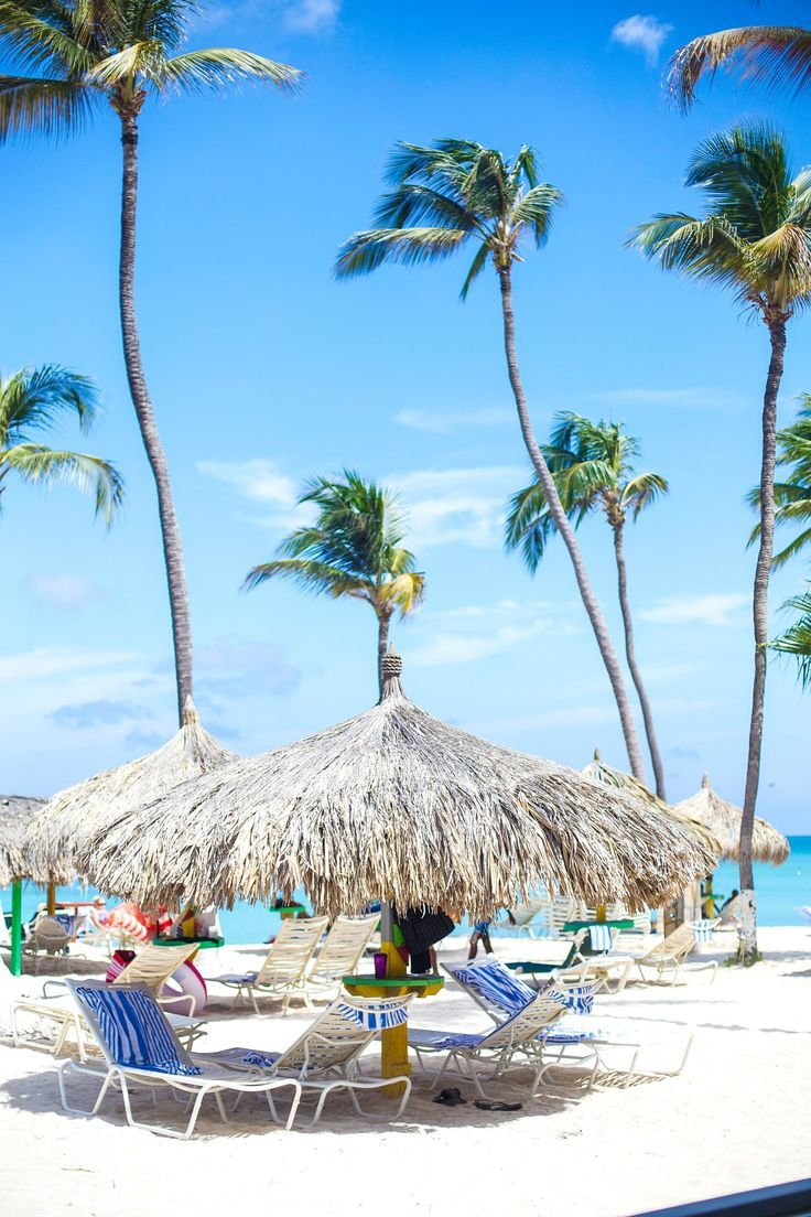 The Ultimate Travel Guide to Aruba