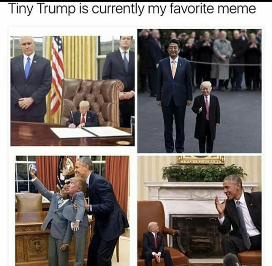 30 Funny Memes For When You Need A Break Funny Memes Best Funny Photos Tiny Trump