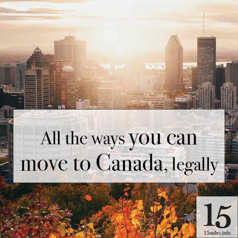 Want To Move To Canada Here Are All Of Your Immigration Options Immigration Canada Moving To Canada Canada