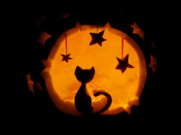 pumpkin cat and stars carving | 13 Killer Halloween Cat ...Jack O Lantern Patterns Cat