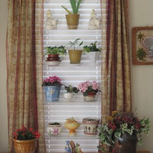 Indoorwindowgardens On Etsy Shop Reviews With Images Window