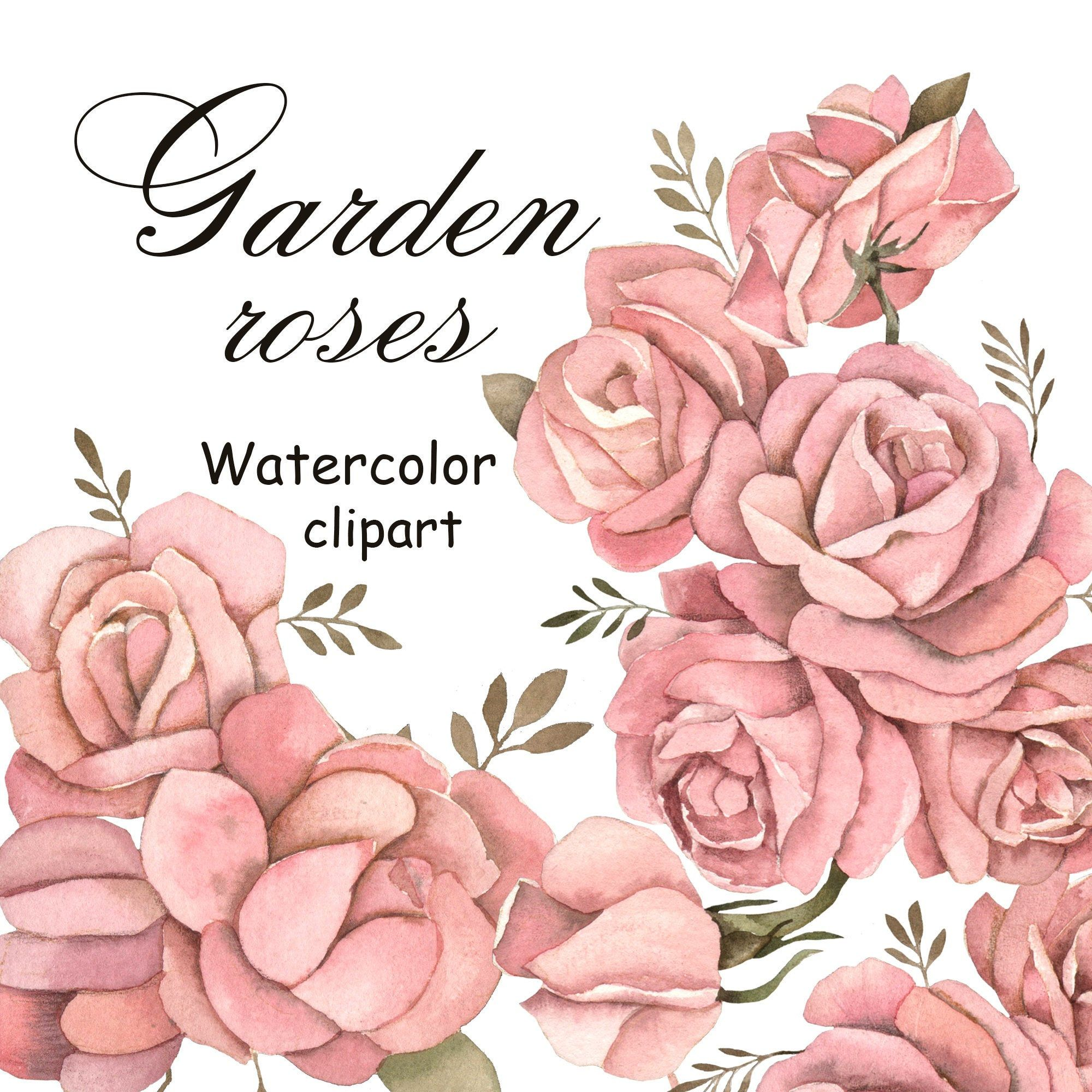 Roses Watercolor Watercolor Flowers Clipart Wedding Design Etsy In 2021 Watercolor Flowers Clip Art Botanical Flowers