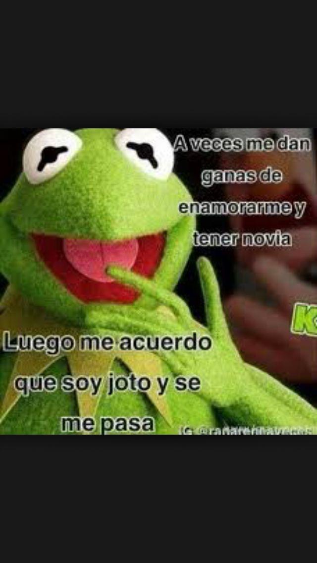 Lol Jajaja Memes De La Rana Rene Funny Facts Funny Quotes Funny Memes