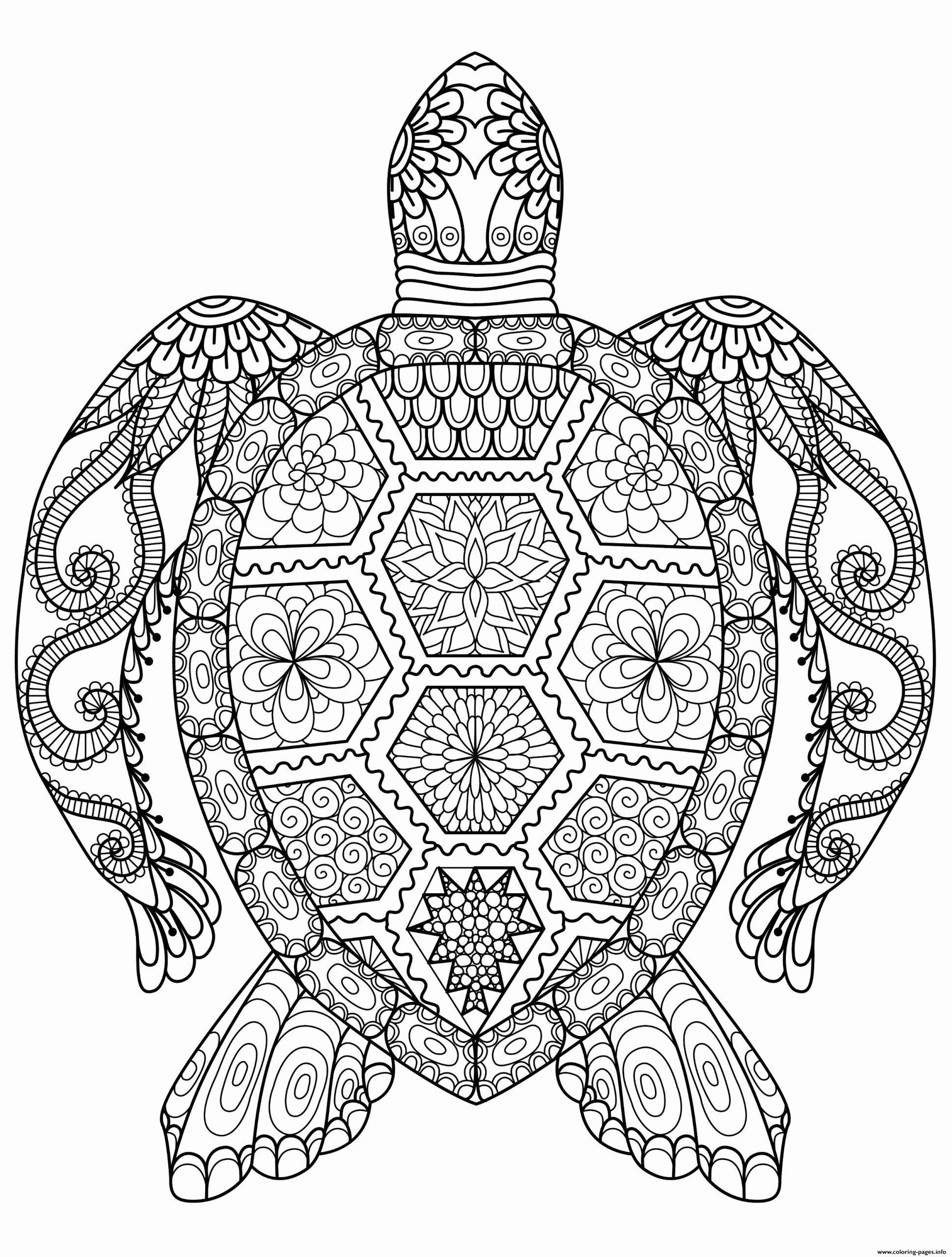 Advanced Online Coloring Pages Bowo Best Turtle Coloring Pages Colouring Sheets For Adults Mandala Coloring Pages