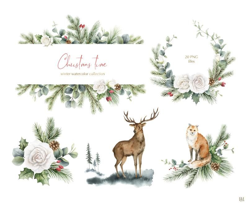 Watercolor Christmas Wreath Png Modern Holiday Clipart Christmas Greenery Eucalyptus Leaves Bouquets Animal Kingdom Landscape Clipart In 2021 Christmas Watercolor Holiday Clipart Winter Watercolor