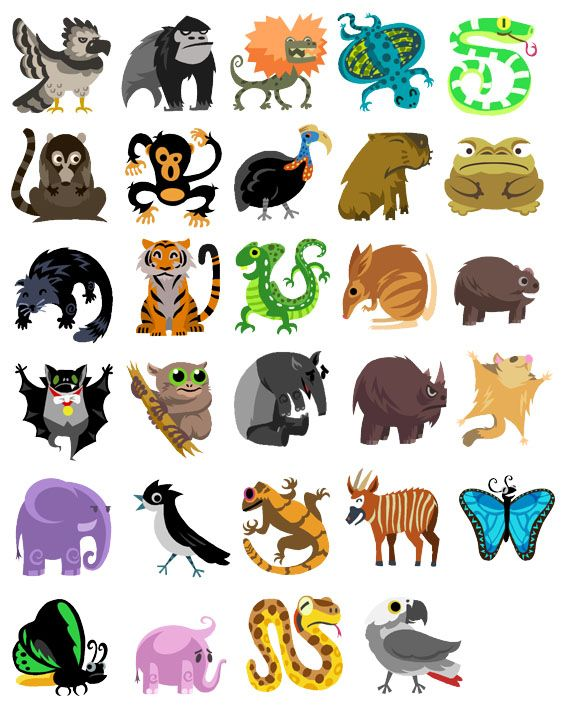 how to draw a tropical rainforest animals for kids
