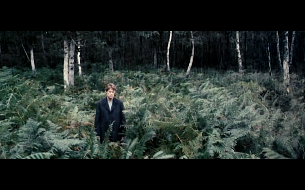 from the film 'Antichrist' #cinematography #film #photography #movie