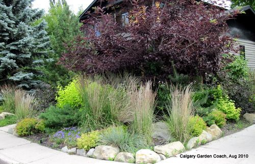 A Low Maintenance Front Yard Garden In Calgary Low Maintenance Garden Landscaping Calgary Landscaping With Rocks