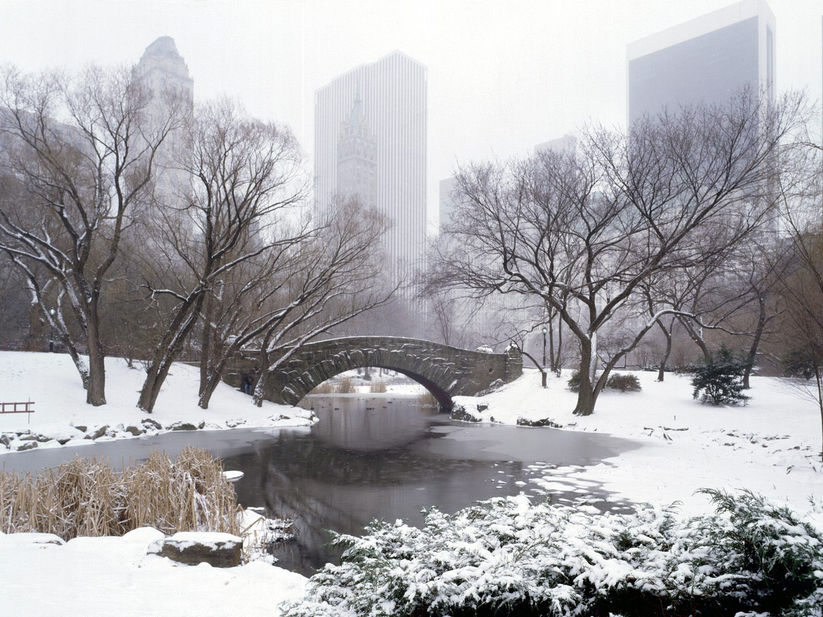 Central Park In The Winter Since I M Going In January New York Attractions New York Tourist Attractions Central Park Winter