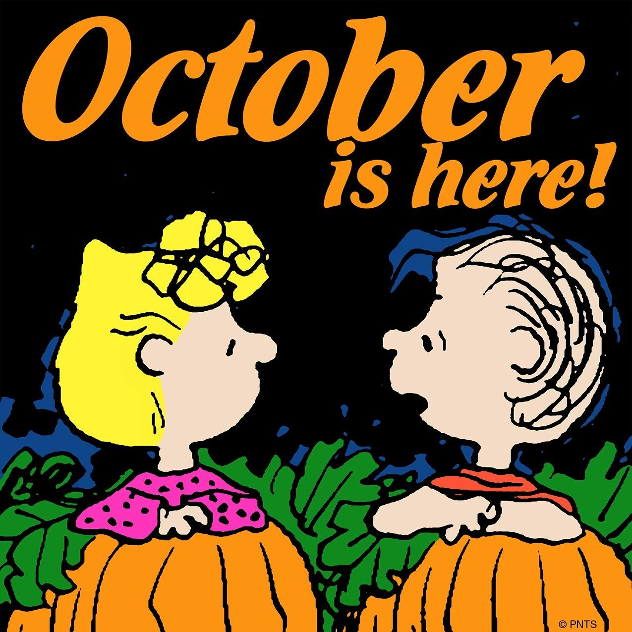 2019 year lifestyle- Halloween Happy peanuts pictures