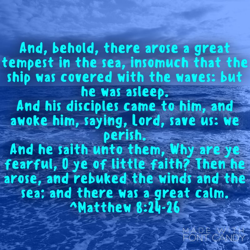 I Love This Because It Can Be Seen As A Metaphor Of Our Lives There Are Often Storms Or Trials In Our Lives And We Just Jesus Latter Day Saints Jesus