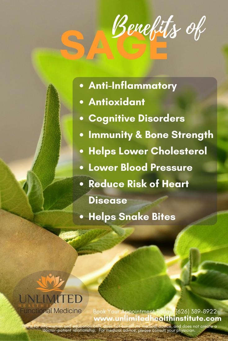 Health Benefits of Sage   Sage benefits Herbs for health ...