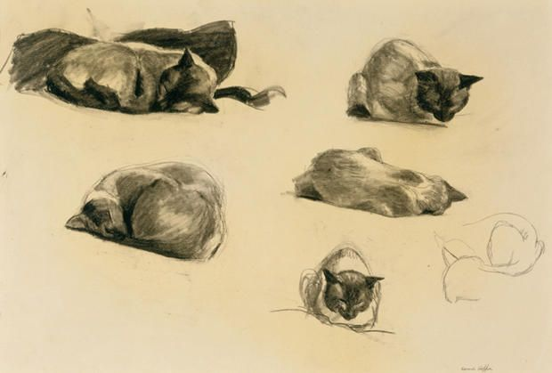 Art history, starring cats and dogs   Edward hopper, Cat art, Dog art
