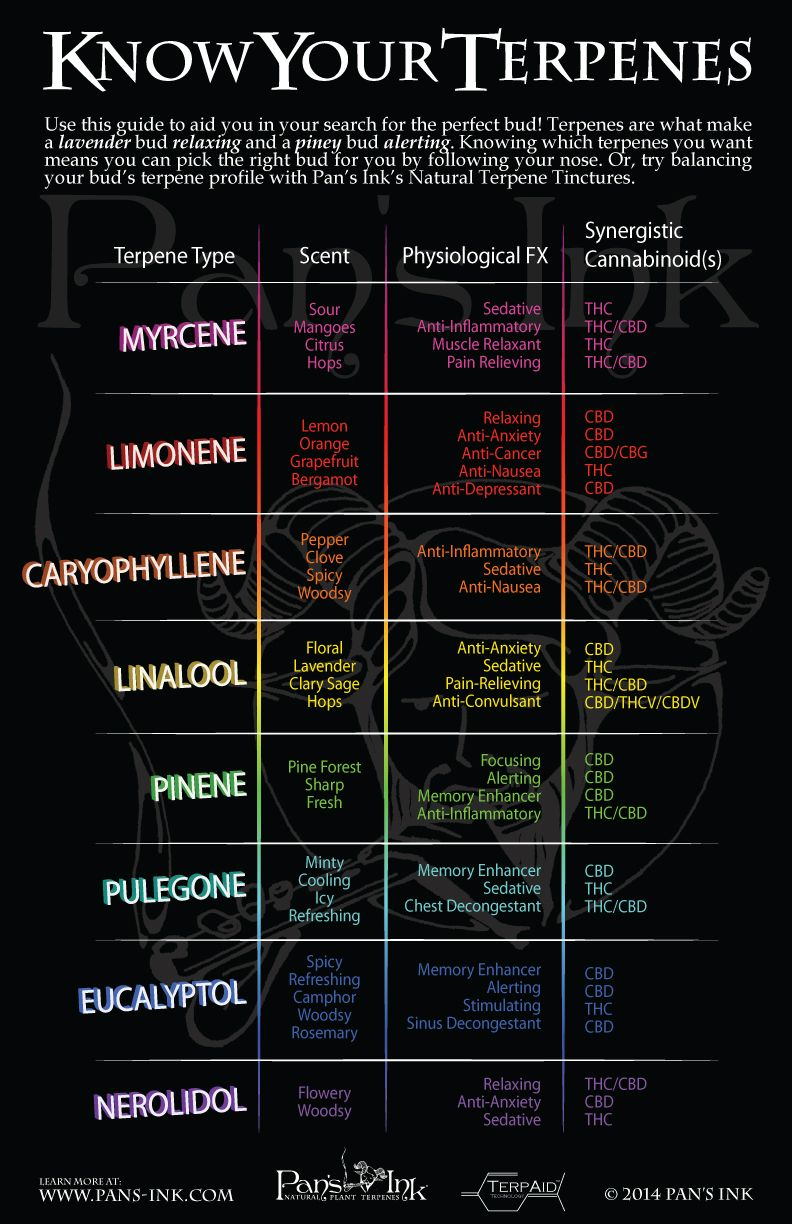 Know your terpenes cannabis core values natural medicine weed brewing infographics also business pinterest rh