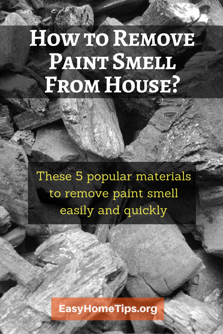 5 Popular Materials To Remove Paint Smell From House Painting