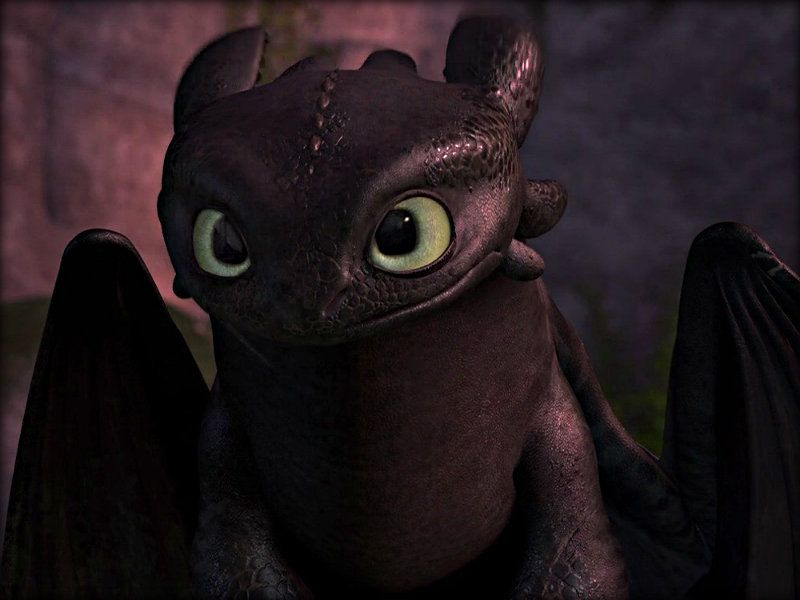 hi there i m toothless hiccups loyal night fury companion and