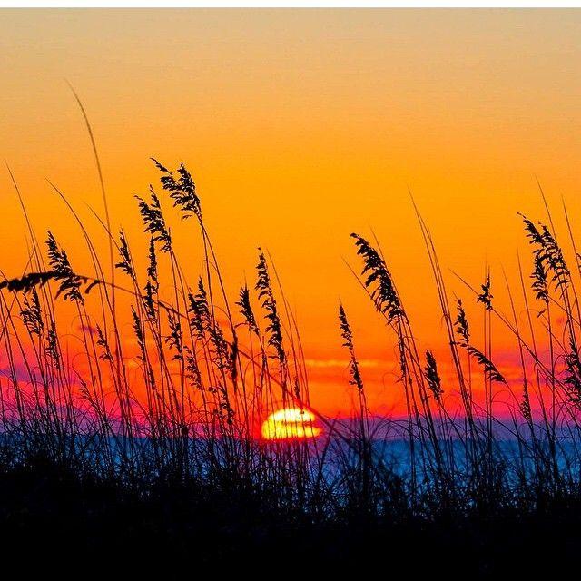 Beautiful Myrtle Beach South Carolina Sunrise Via Instagram By Southcarolinian Check Out Places