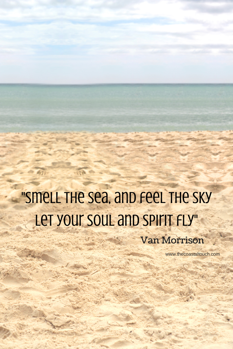 Fly ♥  Beach quotes, Ocean quotes, Sea quotes