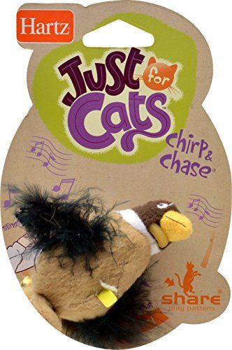Hartz Chirp n Chase Cat Toy * Check this awesome product by going to the link at the image.Note:It is affiliate link to Amazon.