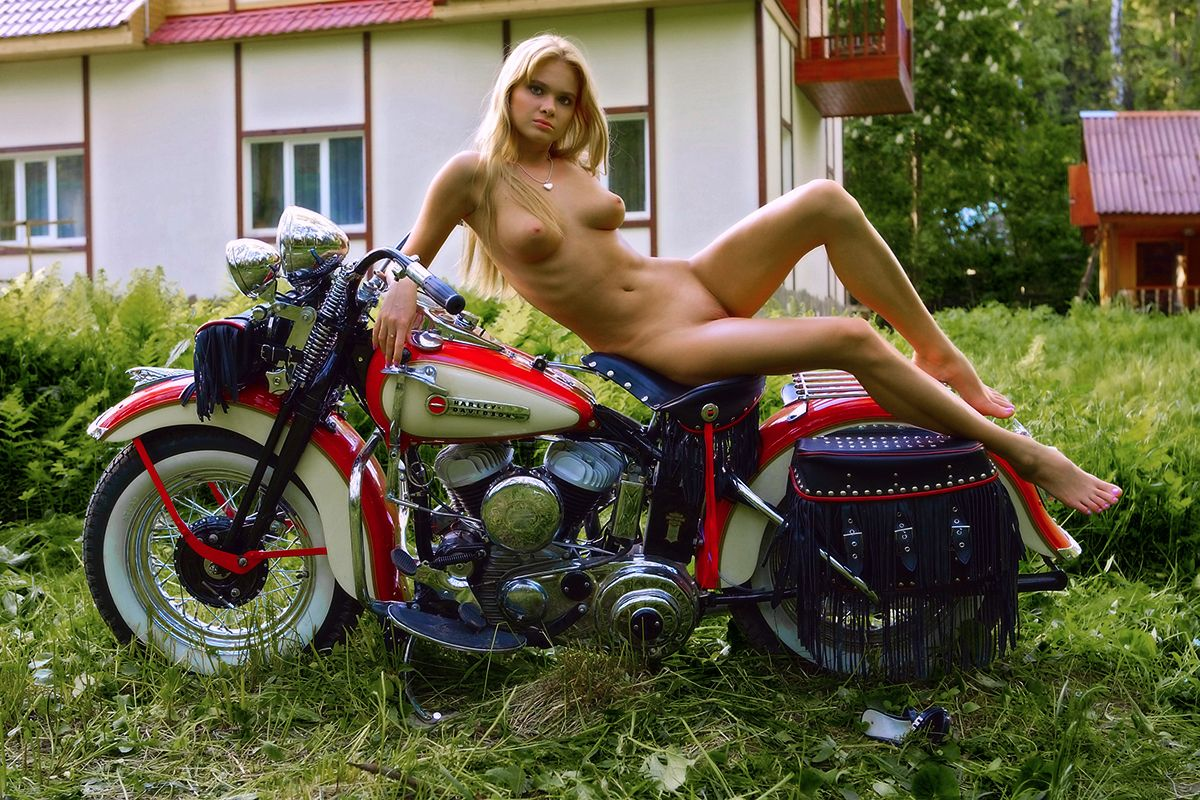 Nudesexygirl and harleydavidson pussy gif pantyhose