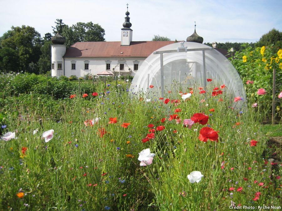 5 Potagers Qui Sauvent La Planete Potager Jardins Potager Permaculture