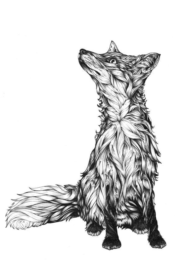 Detailed Bnw Fox Vulpes Vulpes Pinterest Dessin Dessin Renard