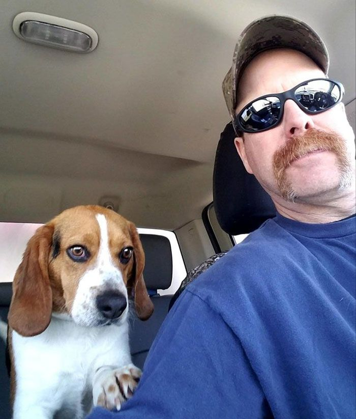 Man Rescues A Beagle From Being Euthanized In A Shelter