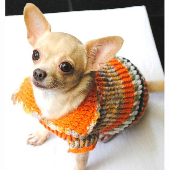 Dog Clothing Xxs Cute Chihuahua Sweater Knit Warm Sweater For
