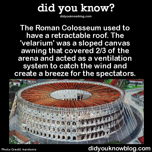 The Roman Colosseum Used To Have A Retractable Roof The